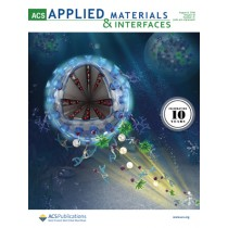ACS Applied Materials and Interfaces: Volume 10, Issue 31