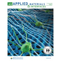 ACS Applied Materials and Interfaces: Volume 10, Issue 45