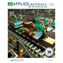 ACS Applied Materials and Interfaces: Volume 10, Issue 48