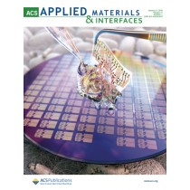 ACS Applied Materials and Interfaces: Volume 11, Issue 1