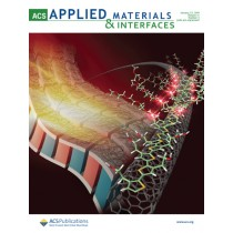 ACS Applied Materials and Interfaces: Volume 11, Issue 3