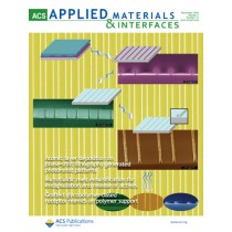 ACS Applied Materials & Interfaces: Volume 2, Issue 12