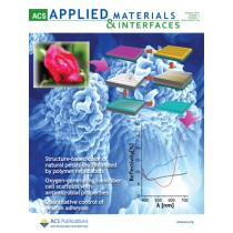 ACS Applied Materials & Interfaces: Volume 3, Issue 1