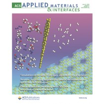 ACS Applied Materials & Interfaces: Volume 6, Issue 11