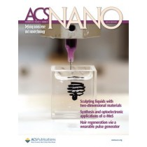 ACS Nano : Volume 13, Issue 11