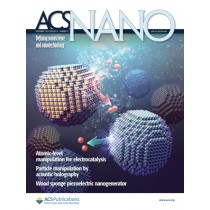 ACS Nano: Volume 14, Issue 11