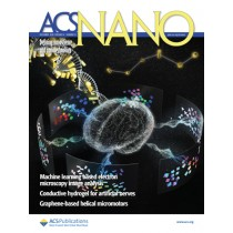 ACS Nano: Volume 14, Issue 12