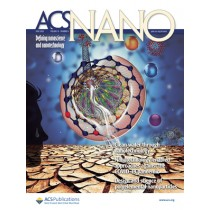 ACS Nano: Volume 14, Issue 6