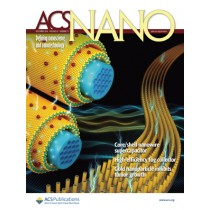 ACS Nano: Volume 10, Issue 12