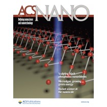 ACS Nano: Volume 10, Issue 6