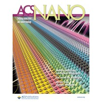 ACS Nano: Volume 11, Issue 10