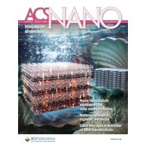ACS Nano: Volume 13, Issue 1