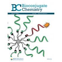 Bioconjugate Chemistry: Volume 32, Issue 6
