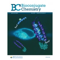 Bioconjugate Chemistry: Volume 26, Issue 6