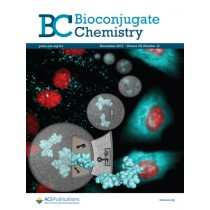 Bioconjugate Chemistry: Volume 28, Issue 12