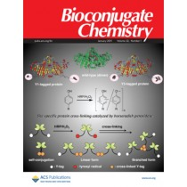 Bioconjugate Chemistry: Volume 22, Issue 1