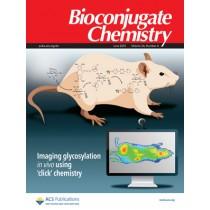 Bioconjugate Chemistry: Volume 24, Issue 6