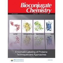 Bioconjugate Chemistry: Volume 24, Issue 8