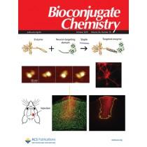 Bioconjugate Chemistry: Volume 24, Issue 10