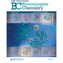 Bioconjugate Chemistry: Volume 25, Issue 6