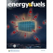 Energy & Fuels: Volume 35, Issue 13
