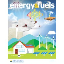 Energy & Fuels: Volume 35, Issue 16