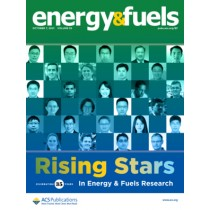 Energy & Fuels: Volume 35, Issue 19