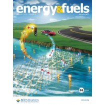Energy & Fuels: Volume 35, Issue 1
