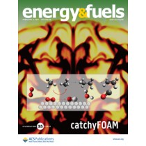 Energy & Fuels: Volume 35, Issue 3