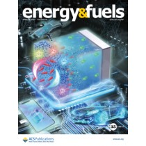 Energy & Fuels: Volume 35, Issue 8