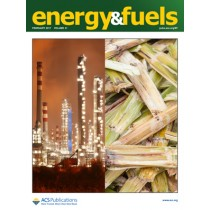 Energy & Fuels: Volume 31, Issue 2