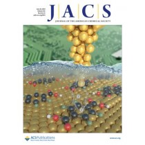 Journal of the American Chemical Society: Volume 141, Issue 25