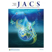 Journal of the American Chemical Society: Volume 141, Issue 32