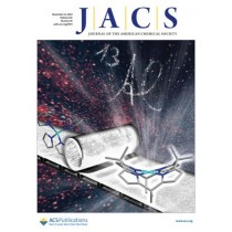 Journal of the American Chemical Society: Volume 141, Issue 45