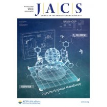 Journal of the American Chemical Society: Volume 141, Issue 46