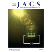 Journal of the American Chemical Society: Volume 141, Issue 47