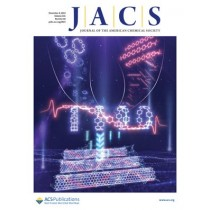 Journal of the American Chemical Society: Volume 141, Issue 48