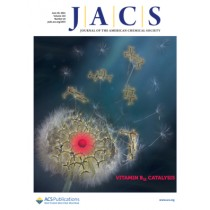 Journal of the American Chemical Society: Volume 143, Issue 25