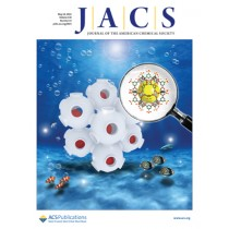 Journal of the American Chemical Society: Volume 138, Issue 19