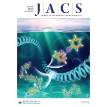 Journal of the American Chemical Society: Volume 139, Issue 19