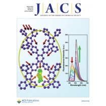 Journal of the American Chemical Society: Volume 132, Issue 19