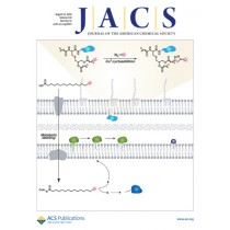 Journal of the American Chemical Society: Volume 132, Issue 31