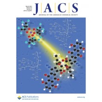 Journal of the American Chemical Society: Volume 133, Issue 19