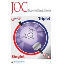 Journal of Organic Chemistry: Volume 82, Issue 19