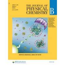 Journal of Physical Chemistry B: Volume 124, Issue 2