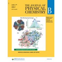 Journal of Physical Chemistry B: Volume 124, Issue 39