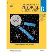 Journal of Physical Chemistry B: Volume 124, Issue 40