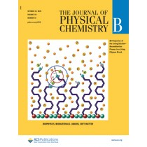 Journal of Physical Chemistry B: Volume 124, Issue 42