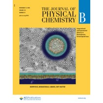 Journal of Physical Chemistry B: Volume 124, Issue 45