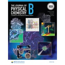 Journal of Physical Chemistry B: Volume 125, Issue 1